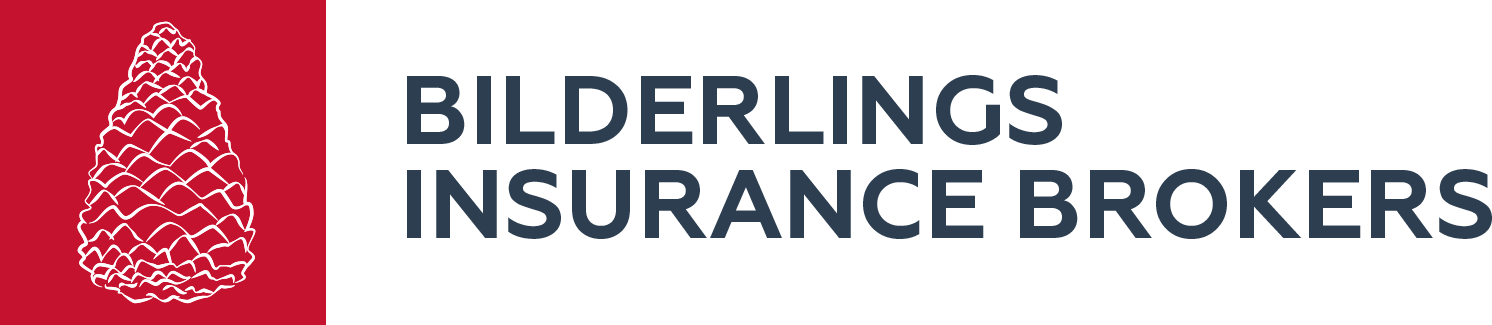 550b0af8836b5b2f6c2cd685_bilderlings-insurance-logo.png